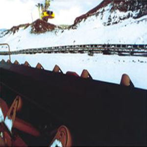Cold-Resistant Conveyor Belts pictures & photos