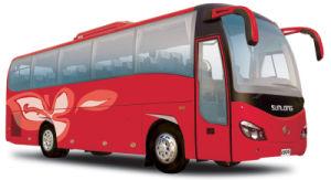 39 Seats Tourism Bus pictures & photos