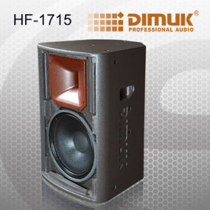 Professional Speaker /Powerful Speaker (HF-1715)