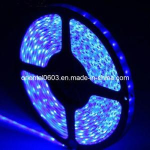 5m SMD 3528 Non-Waterproof Flexible 300 LED Light Ribbon Strip 12V (OT-14)