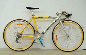 Economic Model Beautiful Track Road Bicycles pictures & photos