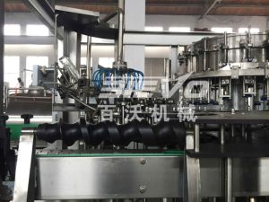 Glass Bottle Carbonated Drink Bottling Filling Line pictures & photos