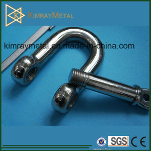 Stainless Steel D Type Shackle pictures & photos