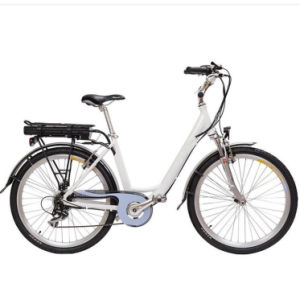 Ce 36V 250W Motor Green City Electric Bicycle with Rear Rack Battery pictures & photos