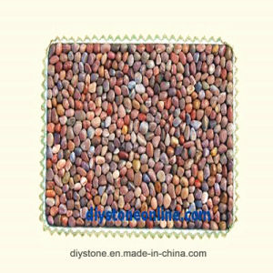 Red Pebble Stone Thin Bath Mat for Bathroom pictures & photos
