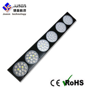 3W Chip LED Plant Grow Light 270W Dual Spectrum pictures & photos