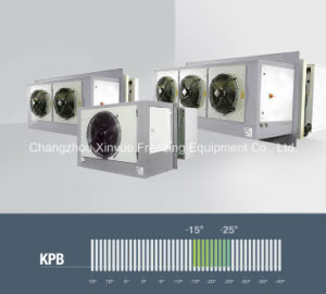 Monoblock Industrial Low Temperature Refrigeration Units for Cold Room pictures & photos