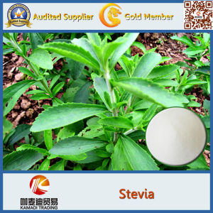 Organic Stevia, Organic Stevia Extract pictures & photos