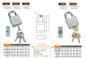 Profile Cylinder Padlocks with Brass or Steel Body pictures & photos