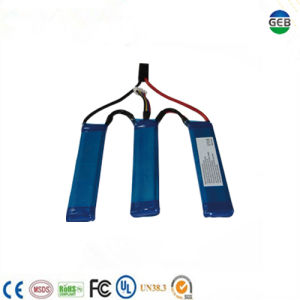 CE/UL Approved High Quality High Capacity Deep Cycleel Electric Gun Battery pictures & photos