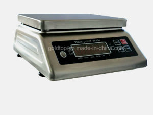 Digital Weighing, Electronic IP68 High Precision Table Scale (TP-09-AGT)