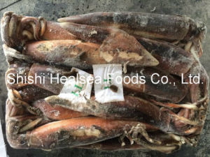 Best Quality Frozen Illex Squid 400-600g pictures & photos