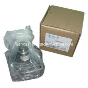Diesel Pump Rotor Head 146401-0520 pictures & photos