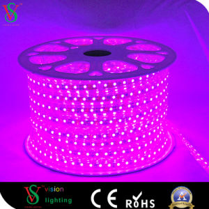 Festival Carnival Magic Color RGB LED Digital Flex Strip Light pictures & photos
