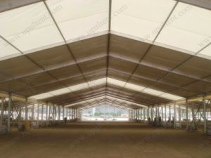 30m Width Large Marquee for Wedding Party pictures & photos