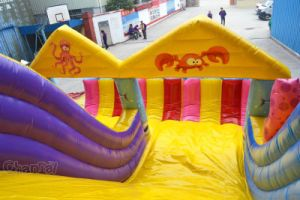 Octopus Inflatable Slide Chsl626 pictures & photos