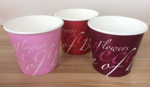 Popcorn Bucket, New Paper Bowl for Sale, Paper Pot Bowls pictures & photos