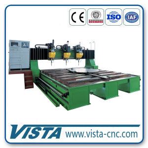 Gantry-Moving Type CNC Drilling Machine (DMG1230) pictures & photos