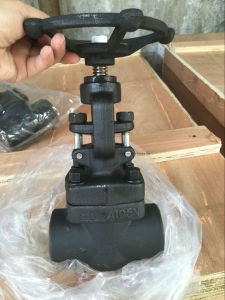 Forged Steel Globe Valve (J11H) pictures & photos