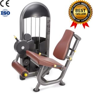 Gym Fitness Equipment Leg Extension pictures & photos