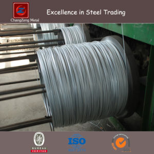 High Tensile Stainless Steel Wire Rod for Concrete Grider pictures & photos