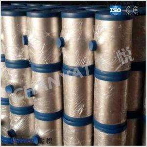 Plate Tee ASME Stainless Steel Tee 1.4539, X2nicrmocu25-20-5 pictures & photos