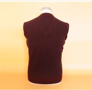 Yak Wool Sweaters/Cashmer Sweaters/ Knitted Wool Sweaters pictures & photos