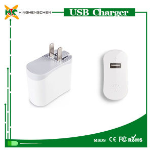 USB Charger for iPad USB Home Charger for Apple pictures & photos