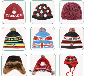 Sample Offered Knitted Women Beanie Hat Cap pictures & photos