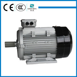 YS Micro Three Phase AC Motor pictures & photos