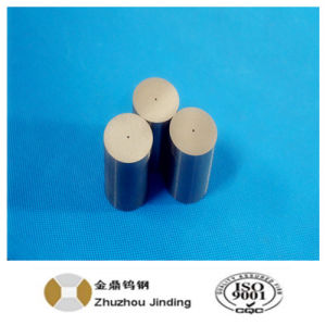 Zhuzhou Manufacturer of Tungsten Carbide Extrusion Dies pictures & photos