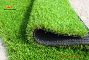 China Plastic Pet Grass Mix Color 35mm Height pictures & photos