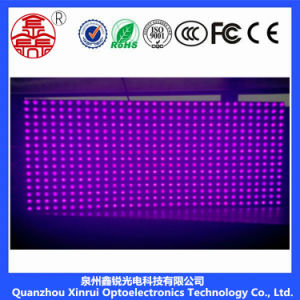 P10 Outdoor Single-Purple LED Module pictures & photos