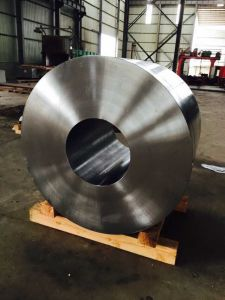 ANSI Stainless Steel & Carbon Steel Big Forged Ring pictures & photos