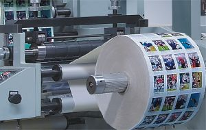 Flexo Printing Machine (LRY-330/470) pictures & photos