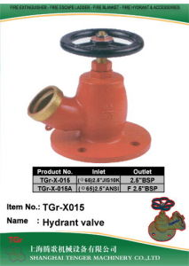 "Brass Fire Hydrant Angle Valve: Bsp 2-1/2"" pictures & photos"