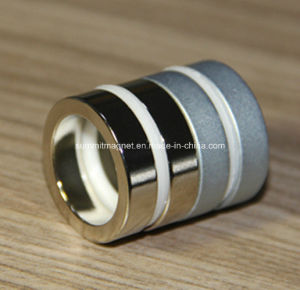 Ring Shape Neodymium Magnets Ni Coating pictures & photos