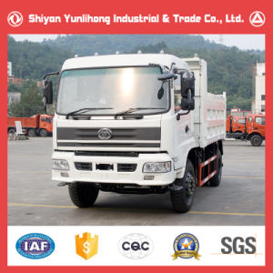 Tri-Ring Tipper 10 Ton Dump Truck pictures & photos