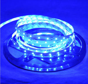 60SMD3528 4.8W/M Blue LED Strip pictures & photos