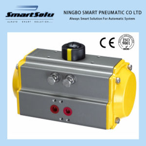 Rt Series Hard Anodizing Different Color Pneuamtic Actuator pictures & photos