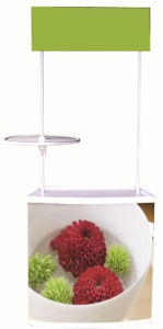 2014 Display Stand Promotion Units (DW-P-T2) pictures & photos