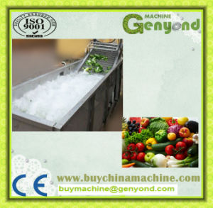 Full Stainless Steel Fruit Washing Machine pictures & photos