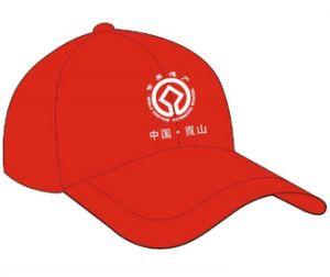 Company Cap, Company Hat, Logo Baseball Cap, Baseball Cap pictures & photos
