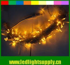 100LED String Light 10m 220V Decoration Light for Christmas