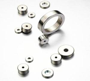 Neodymium Permanent Rare Earth Ring Magnet pictures & photos