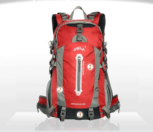 Bakpack Prfessional Nylon Wholesale Bag Traveling pictures & photos