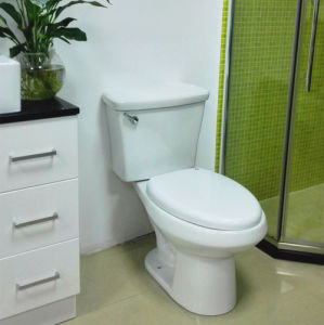 Latin American Siphonic Two-Piece Toilet (V2046) pictures & photos
