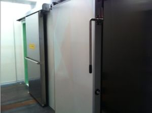 CE Certification Cold Room Door Blast Freezer Door pictures & photos
