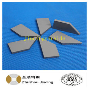 Tungsten Carbide Inserts for Farm Tractor Snow Plow pictures & photos