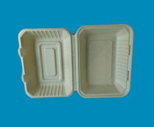 Biodegradable Disposable Bamboo Pulp Lunch Box pictures & photos